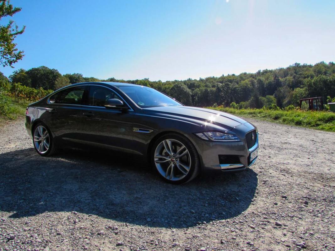 Jaguar XF (1 von 1)